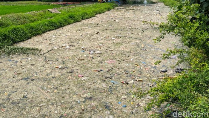Sungai Ledeng yang tertutup sampah/Foto: Enggran Eko Budianto