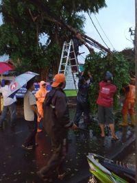 Pohon tumbang di Pasar Rebo menimpa kabel listrik