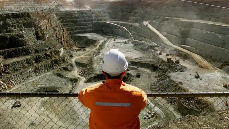 Harus Punya Skill, Suka-Duka Mencari Kerja di Australia Barat