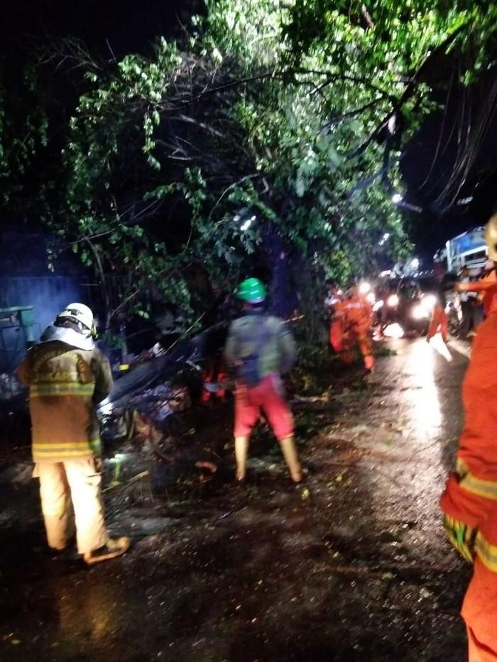 Pohon tumbang di Ciracas, Jaktim, menimpa atap rumah. (Dok. Sudin PKP Jaktim)