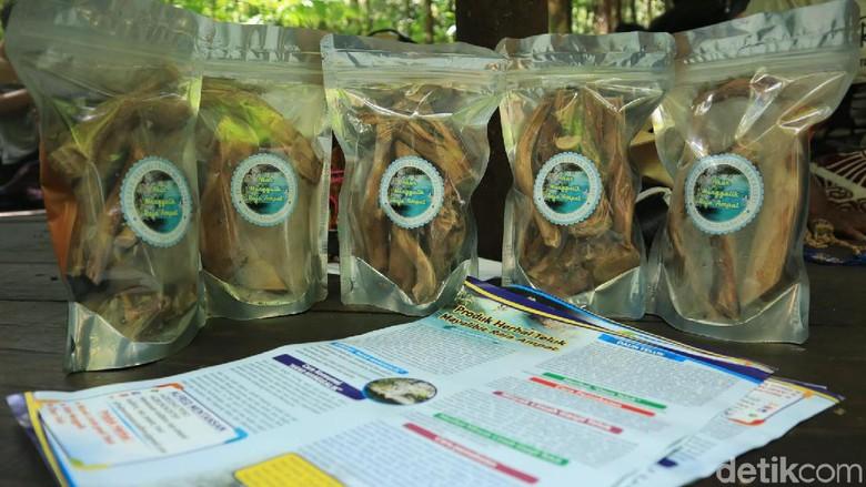 Akar manggalik, obat herbal khas Raja Ampat (Randy/detikcom)
