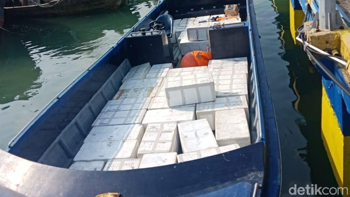Foto: Penyelundupan baby lobster digagalkan di Batam (dok ist)