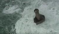 Saat itu tahun 1989, Jean Guichard sedang memotret La Jument dari udara. Mercusuar ini sedang dikeliingi oleh gelombang besar setinggi 20-30 meter. (Youtube)