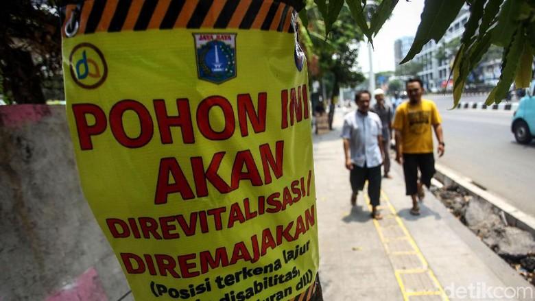 Tempel Poster di Pohon yang Akan Ditebang, Pemprov DKI: Nanti Viral Lagi