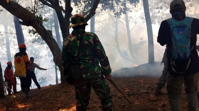Puntung Rokok Diduga Pemicu Kebakaran di Gunung Halimun Salak
