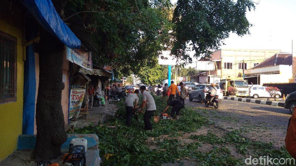 Pohon Tumbang Timpa 2 Pengendara Motor di Cirebon
