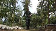Inspiratif! Anggota TNI Ini Sukses Bercocok Tanam Secara Autodidak