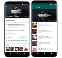 WhatsApp Luncurkan Katalog Belanja Buat Pengguna di RI