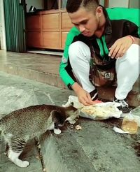 Makan Nasi Bungkus Bareng Kucing, Driver Ojol Ini Bikin Netizen Haru