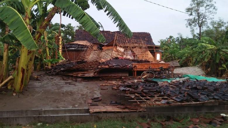 Bojonegoro Diterjang Angin Kencang, Banyak Rumah Rusak dan Pohon Tumbang