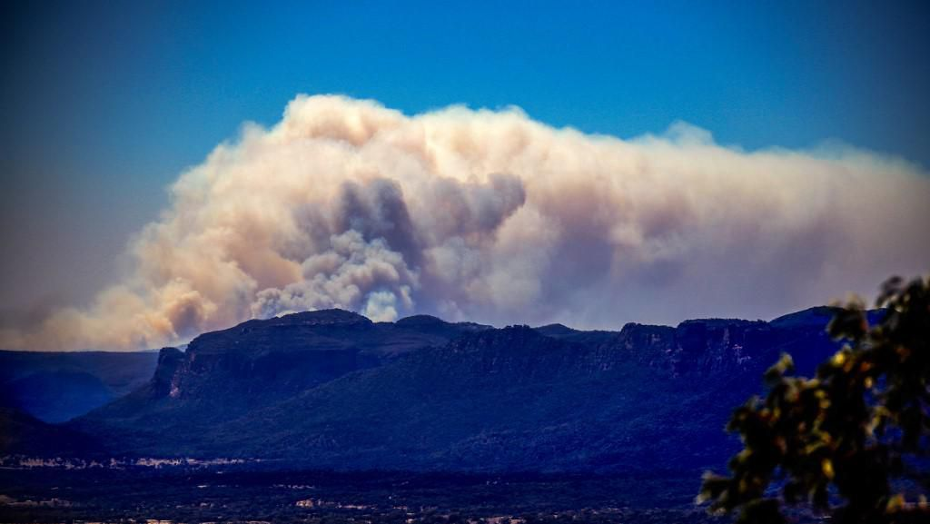 2 Orang Tewas Akibat Kebakaran Hutan di Australia, 100 Rumah Hancur
