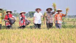 Di Ngawi, Wamendes PDTT Resmikan Wisata Sawah Merti Boemi