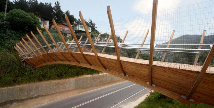 Zapallar Bridge - Chili. Arsitek asal Chili, Enrique Browne membuat jembatan yang apik di kota Zapallar. Jembatan ini dibuat untuk menjadi jalur penghubung antara sebuah perumahan sosial, dengan desa-desa pesisir lainnya di kota tersebut. Istimewa/Dok. Archello.