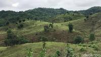 Monumen Paccekke sendiri berada di kawasan perbukitan hijau nan sejuk di Desa Paccekke, Kec. Soppeng Riaja, Kabupaten Barru, Sulsel. (Muhammad Nur Abdurrahman/detikcom)