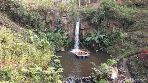 Air Terjun Coban Jahe memiliki air yang mengalir setinggi 45 meter. Di sini traveler bisa menemukan spot cantik di antaranya jembatan kayu yang membelah pepohonan dan teras kayu dengan latar belakang air terjun dan tebing. (Muhammad Aminudin/detikcom)