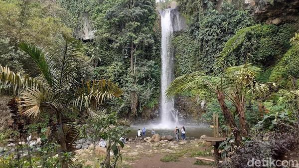 Nama Coban Jahe diambil dari kata Pejahe (matinya) para pejuang. Sebelum sampai ke air terjun cantik ini, traveler akan melewati Taman Makam Pahlawan. (Muhammad Aminudin/detikcom)