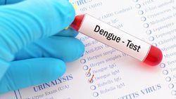 Enam Strategi Kemenkes Tekan Laju Kasus Dengue Nasional
