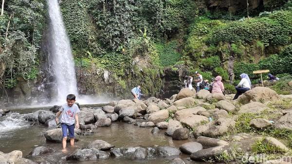 Seperti layaknya wisata air terjun, Coban Jahe menyuguhkan hawa segar nan sejuk dengan gemercik air terasa dingin ketika menyentuh kulit. Pemandangannya pun masih asri. (Muhammad Aminudin/detikcom)