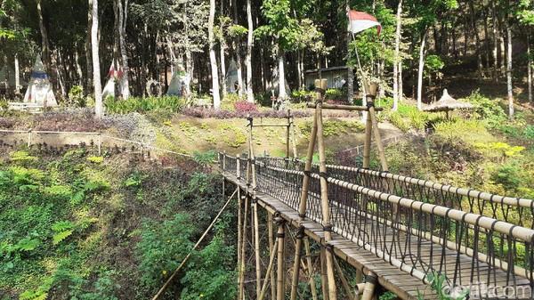 Berjarak sekitar 700 meter, akan menemui Coban Jahe 3, yang tingginya hampir sama dengan Coban Tarzan. (Muhammad Aminudin/detikcom)