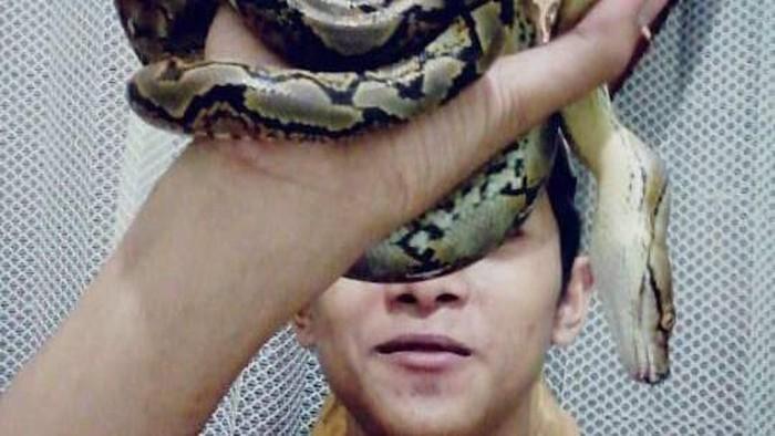 Foto: Rendy dan ularnya (dok.istimewa)