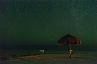 Saat bulan tak menampakkan diri, pantai ini akan bercahaya karena adanya fitoplanton bioluminescent. Kamu bisa bermain kayak di antara lautan bercahaya. (iStock)
