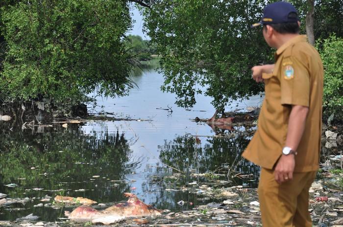 Petugas Dinas Ketahanan Pangan dan Peternakan Sumut mengamati bangkai babi yang dibuang pemiliknya di Danau Siombak Marelan, Medan, Sumatera Utara, Senin (11/11/2019). Data Dinas Ketahanan Pangan dan Peternakan Sumut mencatat sedikitnya ada 4.682 babi mati yang diduga akibat wabah virus Hog Kolera dan African Swine Fever atau demam babi Afrika di 11 kabupaten/kota di Sumut. ANTARA FOTO/Septianda Perdana/aww.