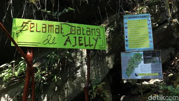 Dalam bahasa setempat, Ajelly atau Ajelle pun memiliki makna. Artinya air yang mengikuti aliran sebatas di daratan, tapi tidak sampai laut (Randy/detikcom)