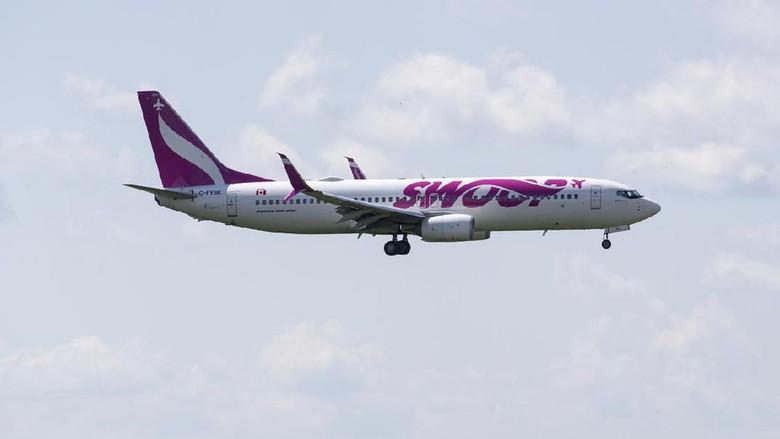 Foto: Swoop Airlines (iStock)