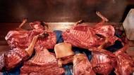 Kisah Seram Budaya Makan Daging Anjing di Berbagai Negara