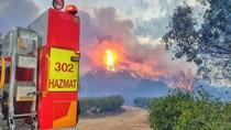 Besok Lebih Mengerikan, Kebakaran Hutan Musnahkan 850 Ribu Hektar Lahan di Australia