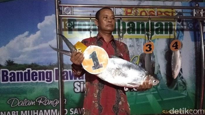 Bandeng seberat 7,66 kg/Foto: Suparno