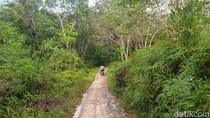 Cerita Korban Tragedi G30S, Niat Jadi Guru Malah Dikirim ke Pulau Buru