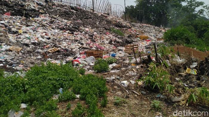 Tumpukan sampah di Cileungsi (Sachril/detikcom)
