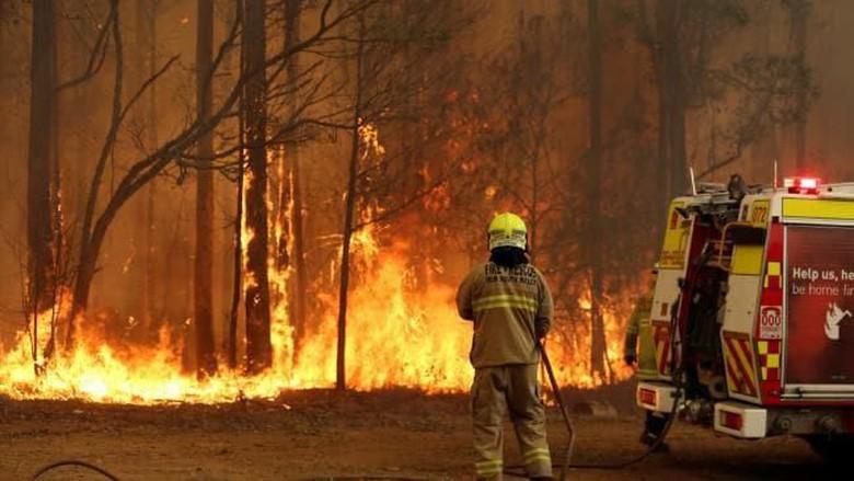 Foto: Kebakaran hutan di wilayah dekat Kota Taree, NSW. Australia (news corp australia)