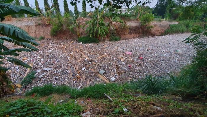Foto: Sampah di Kali Jambe (Isal/detikcom)