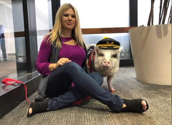 Saat di bandara, LiLou menghibur para penumpang dan mengalihkan perhatian mereka supaya tertuju kepadanya. (Jane Ross/Reuters)