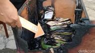 Aneh! Kebakaran di Kantor Korpri Klaten Hanya Terjadi di 3 Meja Arsip