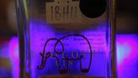 Ih Jijik! Kotoran Gajah Jadi Bahan Baku Minuman Ini