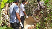 Mayat Wanita Bertato Bintang Ditemukan Mengering di Brebes