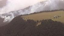 Api Bisa Muncul Kapan Saja, Kebakaran Hutan di Australia Kian Meluas