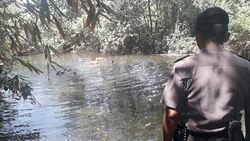 Hilang Sejak Kemarin, Suharja Diduga Hanyut di Sungai Purworejo