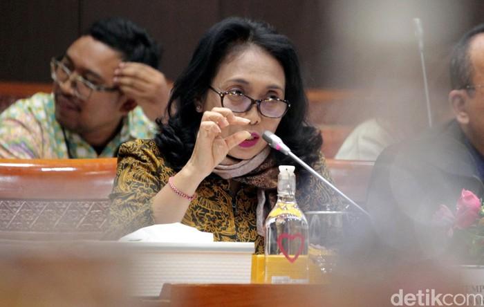 Menteri PPPA I Gusti Bintang (Lamhot Aritonang/detikcom)