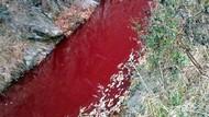 Hiii... Sungai di Perbatasan Korea Tiba-tiba Berubah Warna Jadi Merah