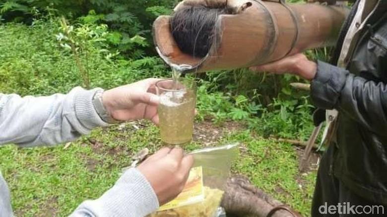 festival minum tuak