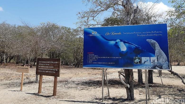Pulau Komodo (Achmad Dwi Afriyadi/detikcom)