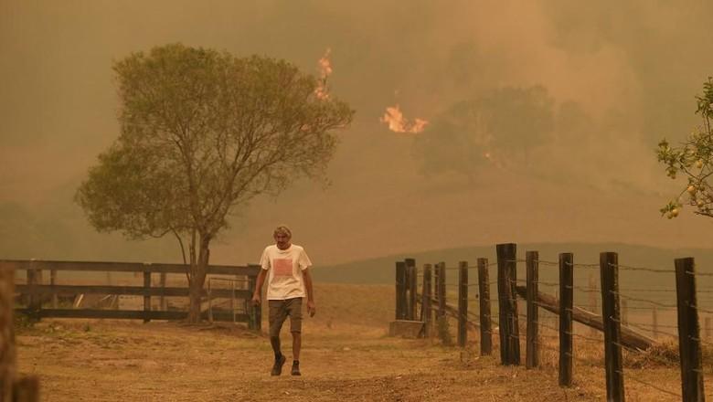 Remaja 16 Tahun Diinterogasi terkait Kebakaran Hutan Australia