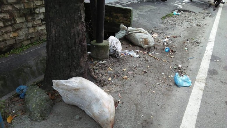 Polisi Cari Pembuang Bangkai Babi di Sungai dan Jalanan Medan
