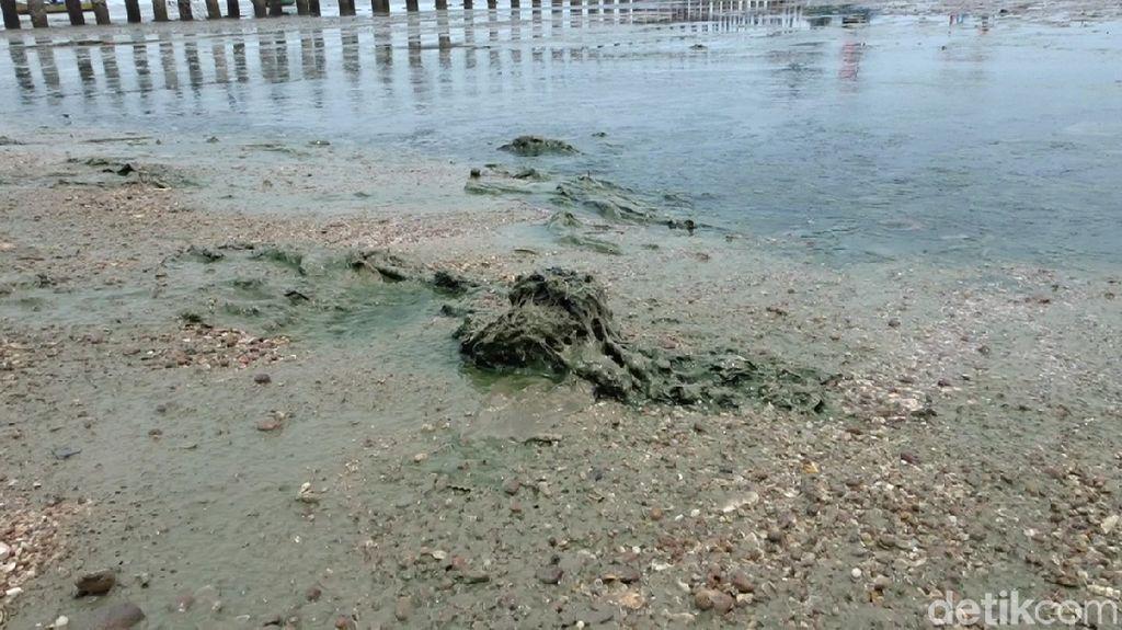 Lagi-lagi Pantai Wates Rembang Berlumpur, Bau dan Bikin Gatal