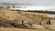 Ratusan Kilogram Narkoba Terdampar di Pantai Prancis
