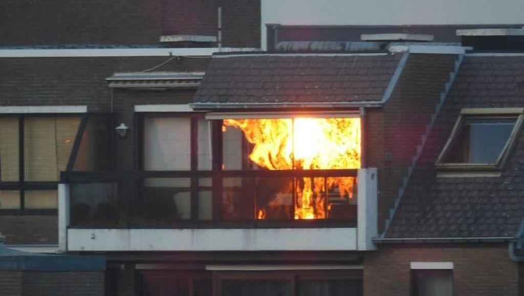 Bukan kebakaran, itu cahaya matahari terbenam di sela pepohonan yang memantul di kaca jendela rumah (Bored Panda)